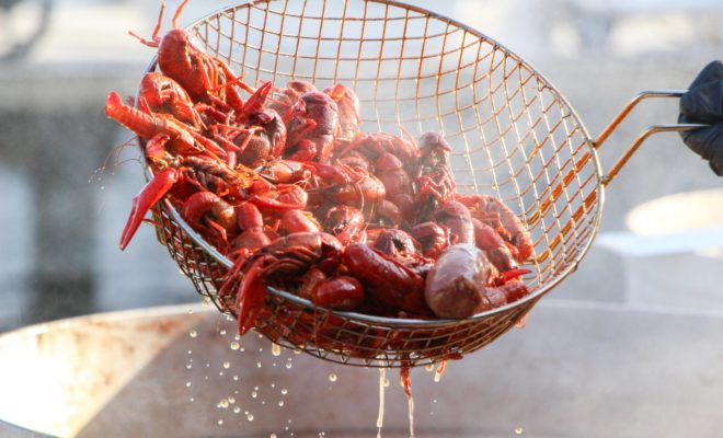 Rookie Mistake: Don't Miss the Llano Crawfish Open