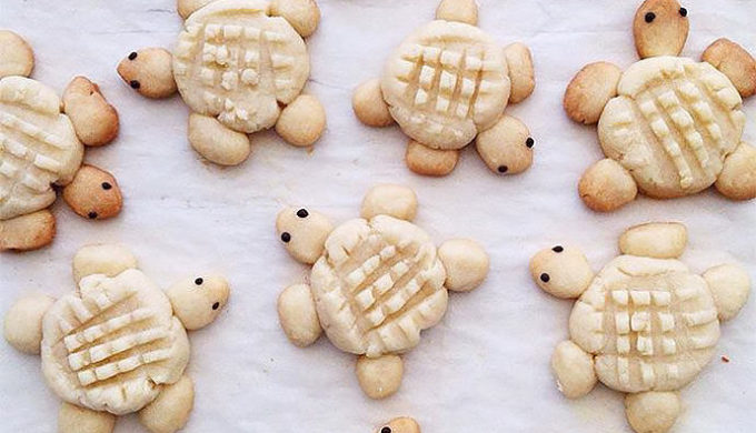 turtle cookies