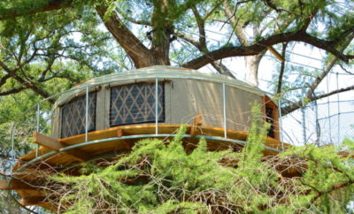 9 Whimsical Texas Tree Houses and Cabins for Your Next Getaway