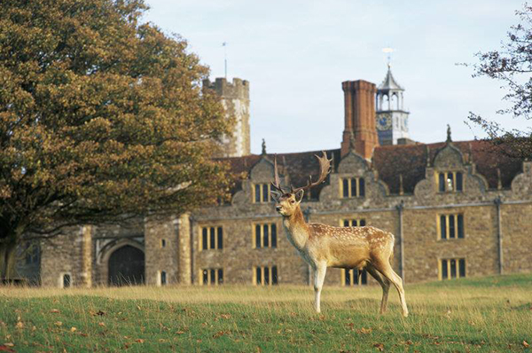 A look at Knole. Photo Credit: Facebook/The National Trust
