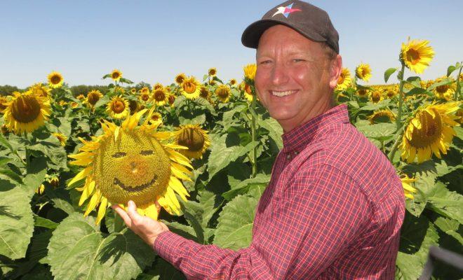Flower Power: North Texas Sunflower Fields are a True Treasure