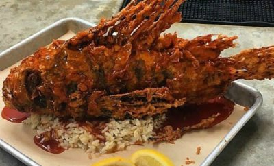 fried lionfish