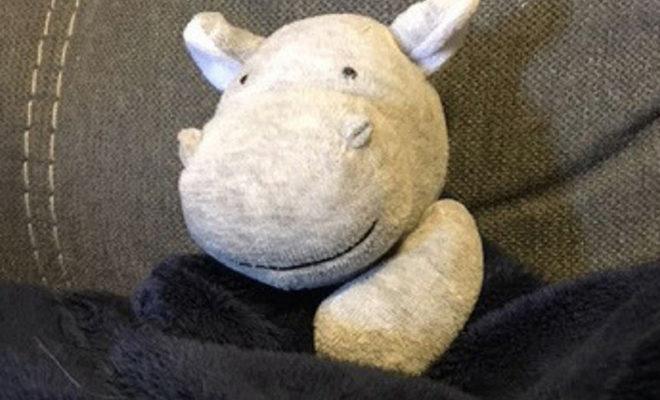 stuffed hippo