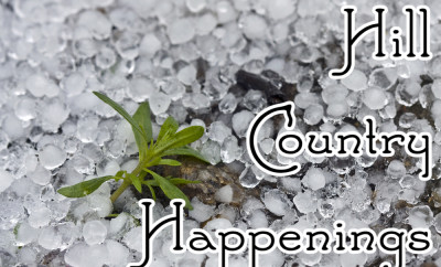 Hill Country Happenings text over hail with one small green plant showing through