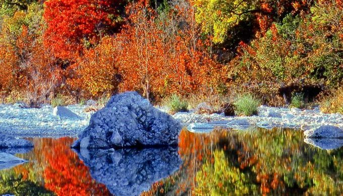 natural beauty, Lost Maples, Autumn, Texas Hill Country