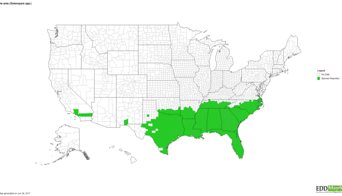 fire ant spread map
