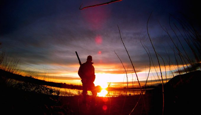 Find Your Happy Hunting Grounds: The Best Dove Hunting in Texas
