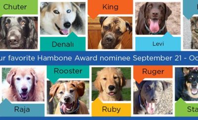 Nationwide Hambone Award Contestants