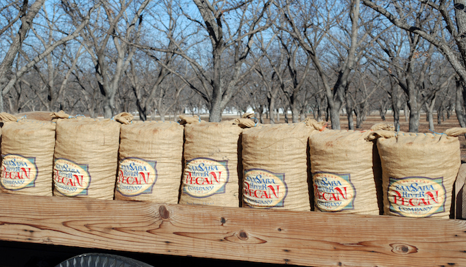 4 Reasons to Go Nuts Over San Saba