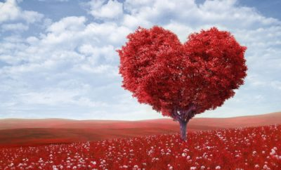 5 Valentine's Day Love Promotions That Will Put You in the Good Books
