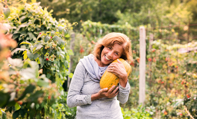 Tips for Urban Homesteading That You Can Start Using Now