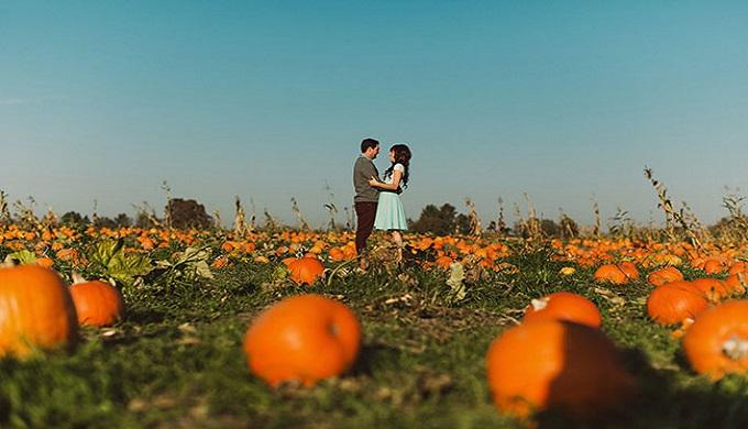 pumpkinpatch-engagement-07-jpguse