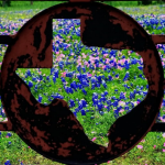 Texas State Blue Bonnets