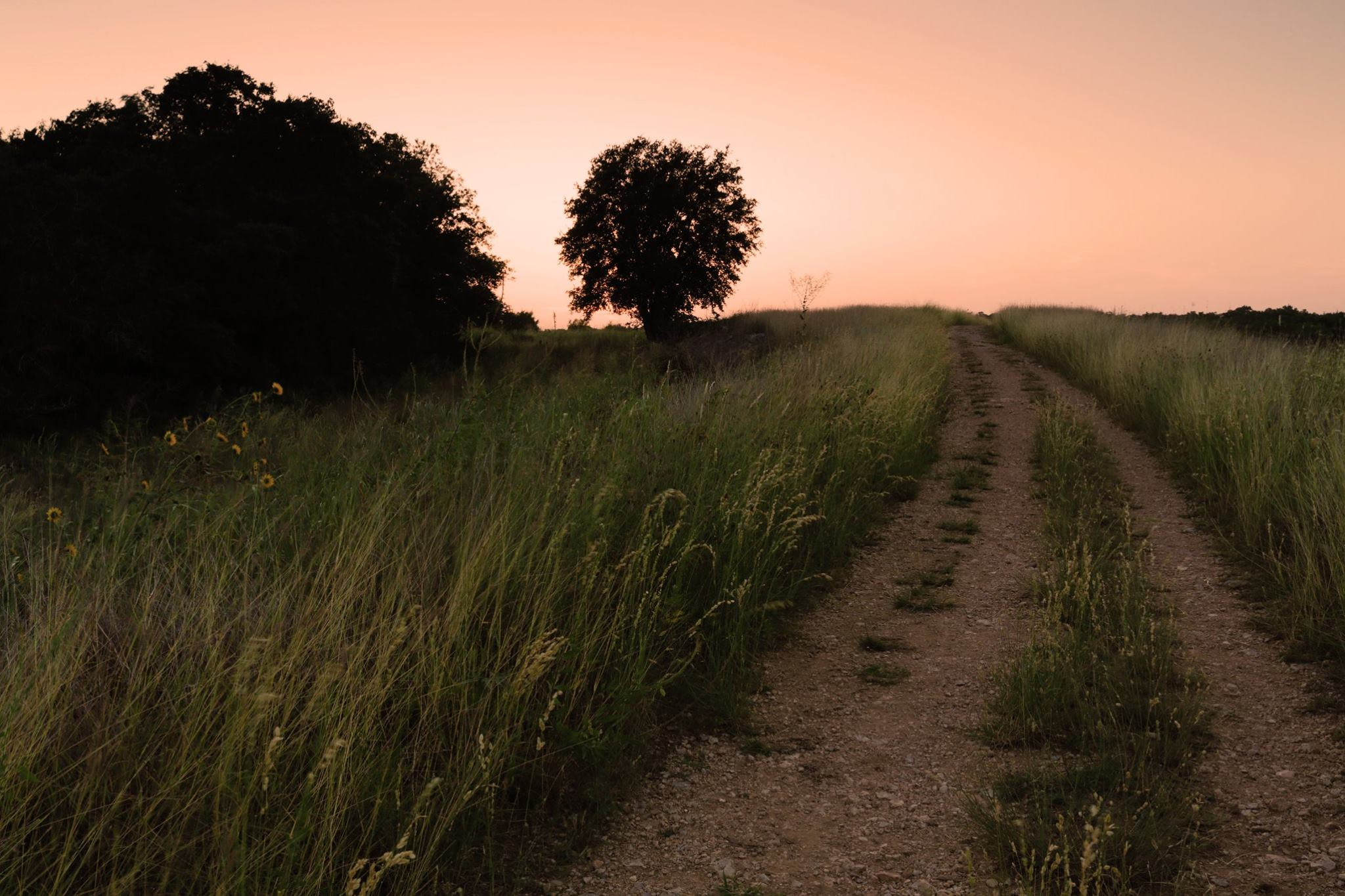12 Amazing Texas Hill Country Hikes You Need to Try