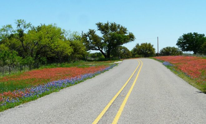 Romance Your Sweetheart on This Unique Hill Country Road Trip