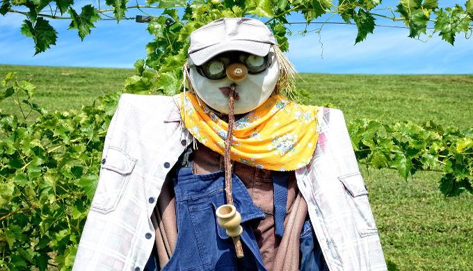 scarecrow-939492_1280