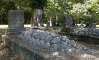 seashell graves