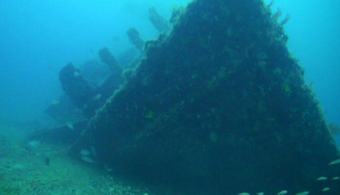 ship reef