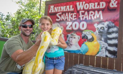 "The Charming ""Hiss""-tory of Snake Farm: The Texas Zoo that Inspired the Song"
