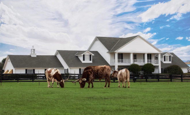"""Sleep in J.R. Ewing's Bedroom at Southfork Ranch from """"Dallas"""" TV Show"""