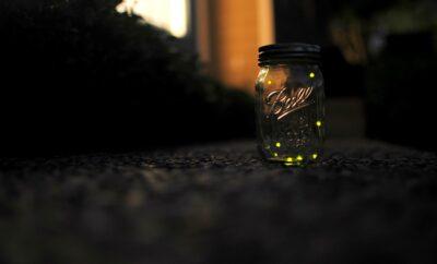 Caussey's Corner: Fireflies in a Jar, the Glow of a Texas Summer Night