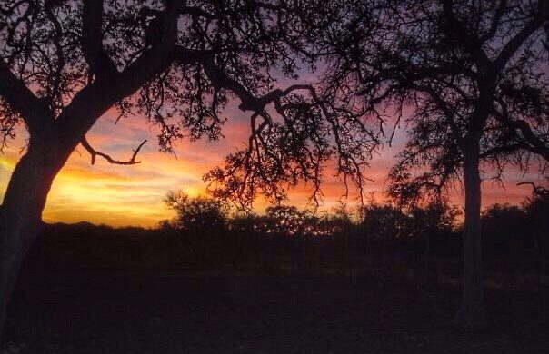 sunset-in-the-texas-hill-country_t20_z2VLOQ