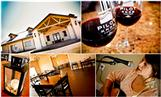 tasting-room-pilot-knob-wine-pictures