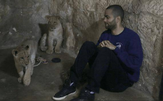 Jaguar San Antonio >> Tony Parker Names The New Jaguar Cubs At The San Antonio Zoo