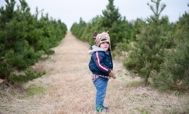 A Texas Road Trip to Pick Out the Perfect Christmas Tree