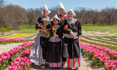 New Texas Tulip Farm Grows 1 Million Flowers for a Good Cause