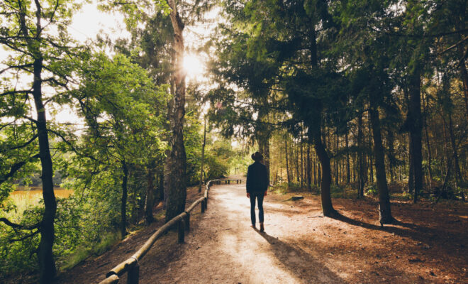 Caussey's Corner: Come Take a Stroll with Me