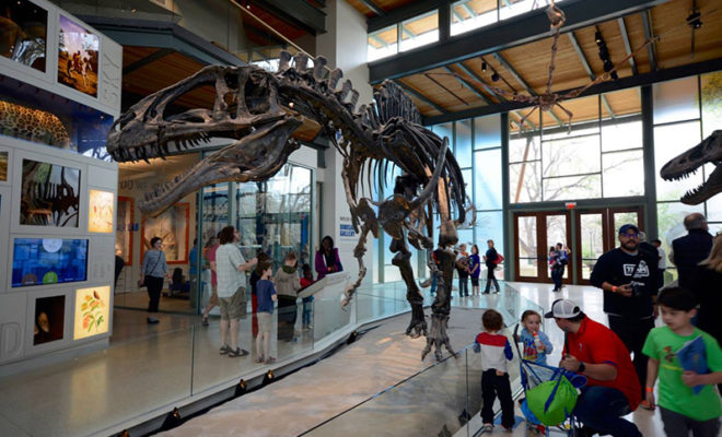 Witte Museum In San Antonio To Reopen With Impressive