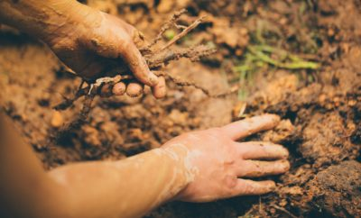Could a Healthy Fat Hidden in Dirt Help Fight Stress?