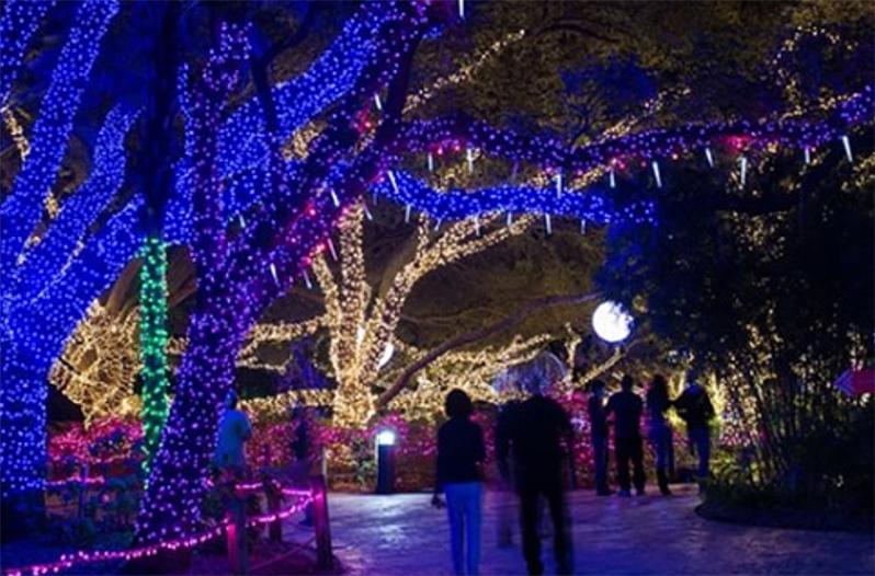 The Houston Zoo Lights Illuminate On November 18